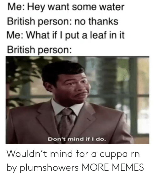 Dank, Memes, and Target: Me: Hey want some water  British person: no thanks  Me: What if I put a leaf in it  British person:  Don't mind if I do. Wouldn't mind for a cuppa rn by plumshowers MORE MEMES