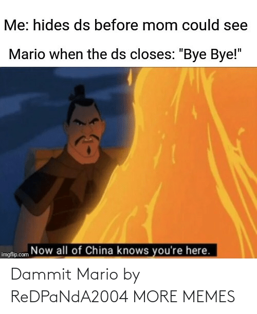 "Now All Of China Knows Youre Here: Me: hides ds before mom could see  Mario when the ds closes: ""Bye Bye!""  Now all of China knows you're here.  imgflip.com Dammit Mario by ReDPaNdA2004 MORE MEMES"