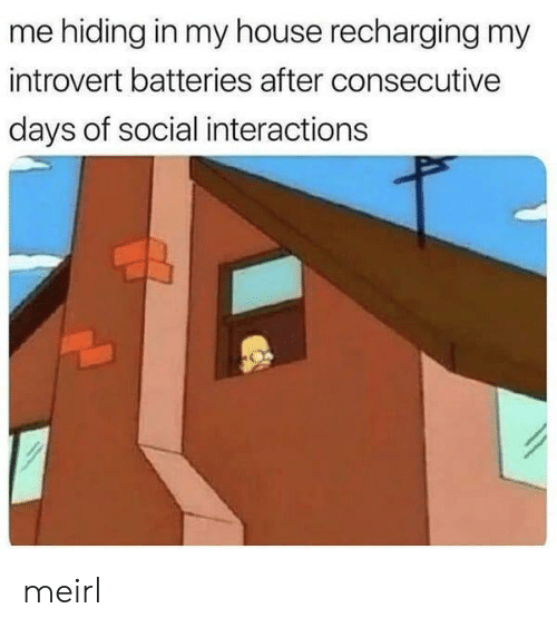 Introvert, My House, and House: me hiding in my house recharging my  introvert batteries after consecutive  days of social interactions meirl