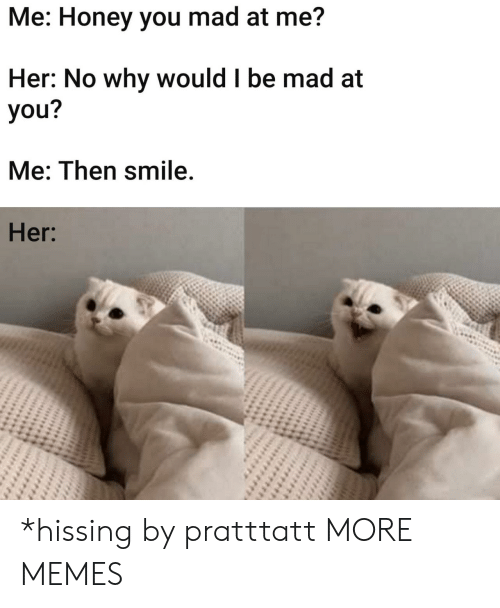 you me: Me: Honey you mad at me?  Her: No why would I be mad at  you?  Me: Then smile.  Her: *hissing by pratttatt MORE MEMES