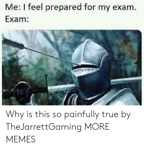 Dank, Memes, and Target: Me: I feel prepared for my exam.  Exam: Why is this so painfully true by TheJarrettGaming MORE MEMES