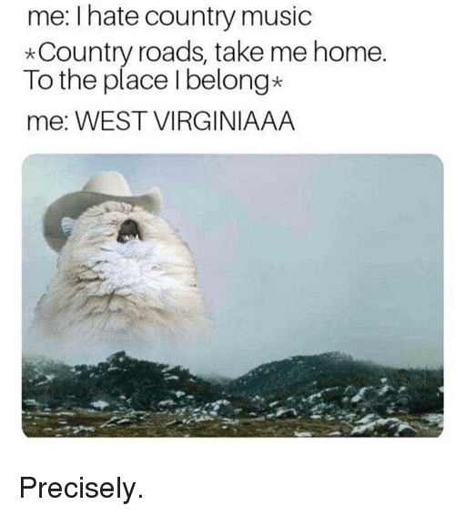 Memes, Music, and Country Music: me: I hate country music  *Country roads, take me home  To the place Ibelong*  me: WEST VIRGINIAAA Precisely.
