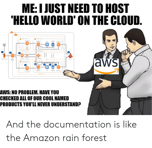 Amazon, Hello, and Cloud: ME: I JUST NEED TO HOST  HELLO WORLD' ON THE CLOUD.  aws  AWS: NO PROBLEM. HAVE YOU  CHECKED ALL OF OUR COOL NAMED  PRODUCTS YOU'LL NEVER UNDERSTAND? And the documentation is like the Amazon rain forest