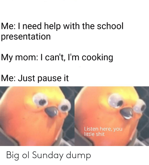 pause: Me: I need help with the school  presentation  My mom: I can't, I'm cooking  Me: Just pause it  Listen here, you  little shit Big ol Sunday dump