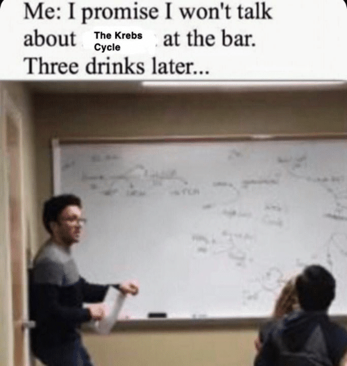 Memes, 🤖, and Bar: Me: I promise I won't talk  about  at the bar  The Krebs  Cycle  Three drinks later...