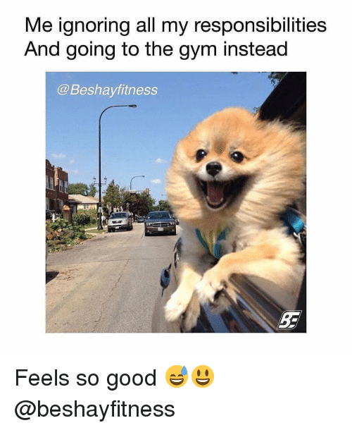 Gym, Good, and All: Me ignoring all my responsibilities  And going to the gvm instead  @Beshayfitness Feels so good 😅😃 @beshayfitness