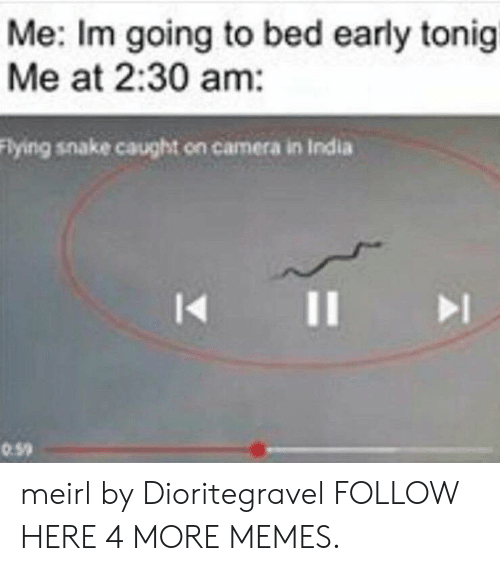caught on camera: Me: Im going to bed early tonigi  Me at 2:30 am:  Flying snake caught on camera in India  I1  0.59 meirl by Dioritegravel FOLLOW HERE 4 MORE MEMES.