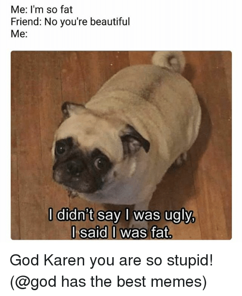 Fat Friend: Me: I'm so fat  Friend: No you're beautiful  Me:  l didn't say l was ugly  l said I was fat  J said O God Karen you are so stupid! (@god has the best memes)
