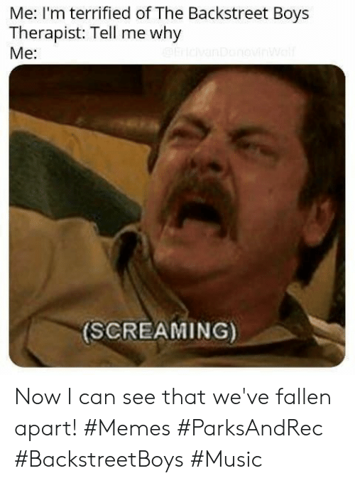 Memes, Music, and Backstreet Boys: Me: I'm terrified of The Backstreet Boys  Therapist: Tell me why  Me:  (SCREAMING) Now I can see that we've fallen apart! #Memes #ParksAndRec #BackstreetBoys #Music