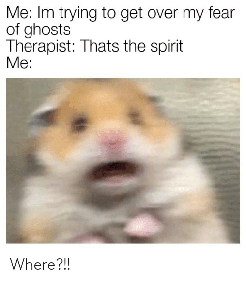 Thats The Spirit: Me: Im trying to get over my fear  of ghosts  Therapist: Thats the spirit  Мe: Where?!!