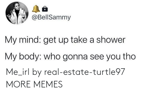 Real Estate: Me_irl by real-estate-turtle97 MORE MEMES