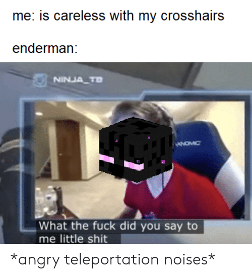 teleportation: me: is careless with my crosshairs  enderman:  NINJA TD  What the fuck did you say to  me little shit *angry teleportation noises*