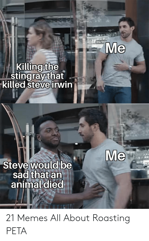 21 Memes: Me  Killing the  stingray that  killed steve irwin  Ve  Steve would be  sad that an  animal died 21 Memes All About Roasting PETA