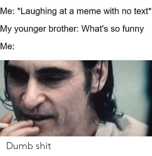 "Dumb, Funny, and Meme: Me: ""Laughing at a meme with no text  My younger brother: What's so funny  Me: Dumb shit"