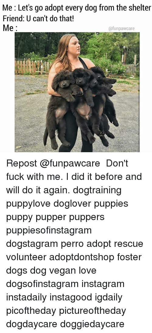 Do It Again, Dogs, and Instagram: Me : Let's go adopt every dog from the shelter  Friend: U can't do that!  Me  @funpawcare Repost @funpawcare ・・・ Don't fuck with me. I did it before and will do it again. dogtraining puppylove doglover puppies puppy pupper puppers puppiesofinstagram dogstagram perro adopt rescue volunteer adoptdontshop foster dogs dog vegan love dogsofinstagram instagram instadaily instagood igdaily picoftheday pictureoftheday dogdaycare doggiedaycare