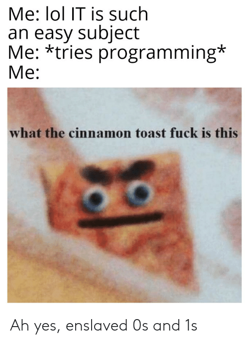 Lol, Reddit, and Fuck: Me: lol IT is such  an easy subject  Me: *tries programming*  Ме:  what the cinnamon toast fuck is this Ah yes, enslaved 0s and 1s