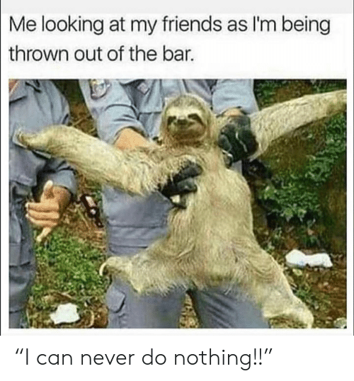 "Friends, Memes, and Never: Me looking at my friends as I'm being  thrown out of the bar. ""I can never do nothing!!"""
