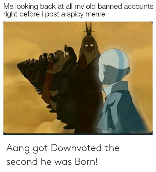 Spicy Meme: Me looking back at all my old banned accounts  right before i post a spicy meme Aang got Downvoted the second he was Born!