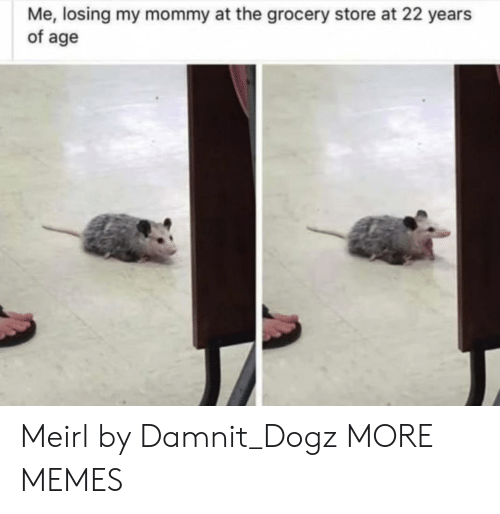 Of Age: Me, losing my mommy at the grocery store at 22 years  of age Meirl by Damnit_Dogz MORE MEMES