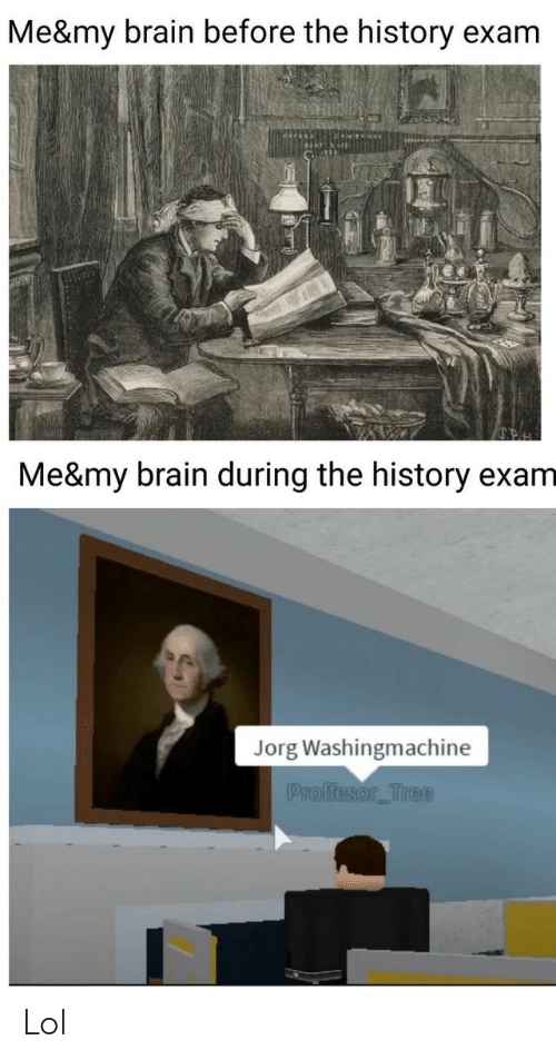 exam: Me&my brain before the history exam  Me&my brain during the history exam  Jorg Washingmachine  Proffesor_Tree Lol