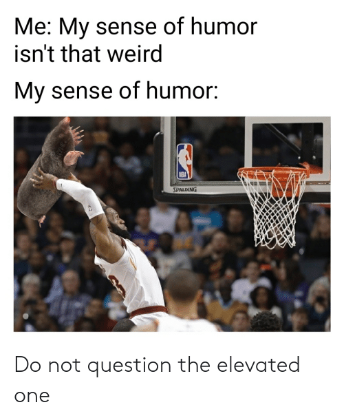 Nba, Reddit, and Weird: Me: My sense of humor  isn't that weird  My sense of humor:  NBA  SPALDING Do not question the elevated one