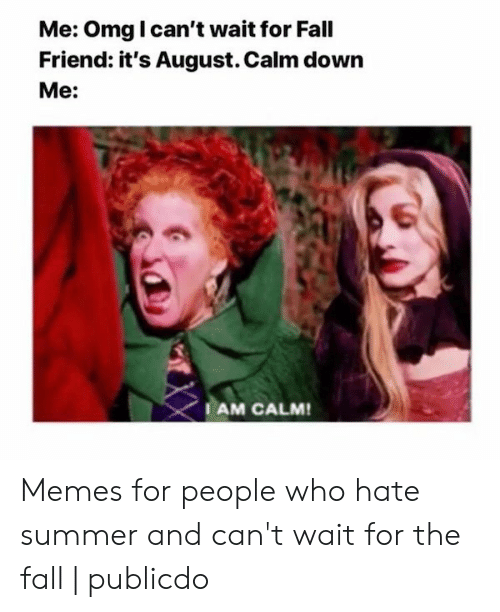 Summer Memes 2018: Me: Omg I can't wait for Fall  Friend: it's August. Calm down  Me:  AM CALM Memes for people who hate summer and can't wait for the fall | publicdo