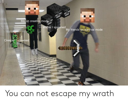 Friends, Reddit, and Can: Me on creative mode  Wither I spawned  My friends on survival mode  Creeper Espawned You can not escape my wrath
