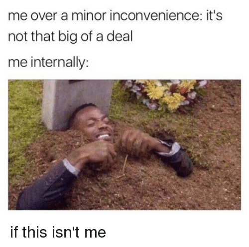 Memes, Inconvenience, and 🤖: me over a minor inconvenience: it's  not that big of a deal  me internally: if this isn't me