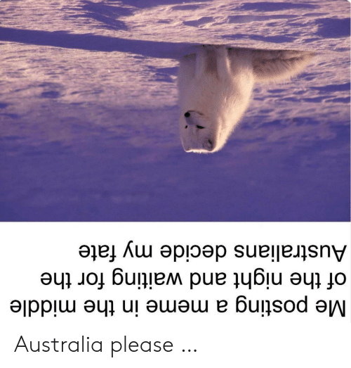 Meme, Australia, and The Middle: Me posting a meme in the middle  of the night and waiting for the  Australians decide my fate Australia please …