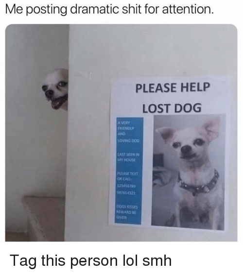 tet: Me posting dramatic shit for attention  PLEASE HELP  LOST DOG  A VERY  FRİENDLY  AND  LOVING DOG  AST SEEN IN  MY HOUSE  PLEASE TET  OR CALL  12345678g  87654321  EWARD BE  GIVEN Tag this person lol smh