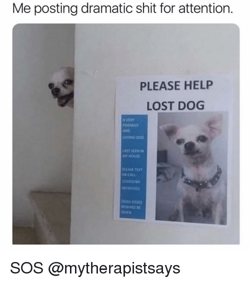 Memes, My House, and Shit: Me posting dramatic shit for attention.  PLEASE HELP  LOST DOG  A VERY  RIENOLY  AND  LOVING DOG  AST SEEN IN  MY HOUSE  PLEASE TEXT  OR CALL  123456789  7654321  EWARD RBE  GrVE対 SOS @mytherapistsays