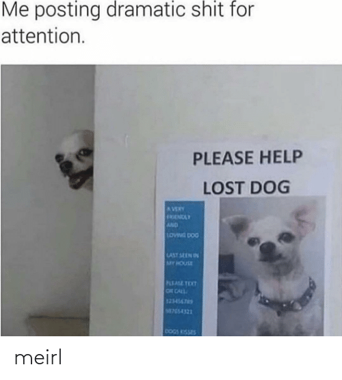 Text: Me posting dramatic shit for  attention.  PLEASE HELP  LOST DOG  AVERY  FRENDLY  AND  LOWNG DOG  LAST SEEN IN  MY HOUSE  PLEASE TEXT  OR CALL  123456765  M755-4321  DOGS KISSES meirl
