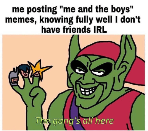"""Friends, Memes, and Irl: me posting """"me and the boys""""  memes, knowing fully well I don't  have friends IRL  The gang's all here"""