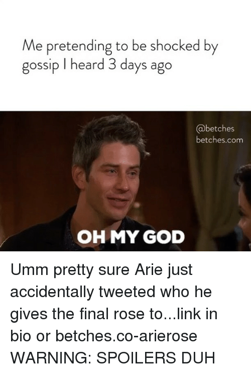 God, Oh My God, and Link: Me pretending to be shocked by  gossip I heard 3 days ago  betches  betches.com  OH MY GOD Umm pretty sure Arie just accidentally tweeted who he gives the final rose to...link in bio or betches.co-arierose WARNING: SPOILERS DUH