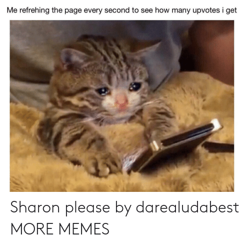 Dank, Memes, and Target: Me refrehing the page every second to see how many upvotes i get Sharon please by darealudabest MORE MEMES