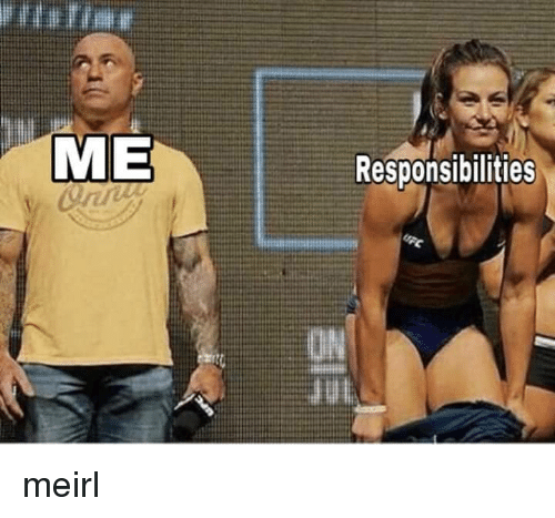 MeIRL and  Responsibilities: ME  Responsibilities meirl