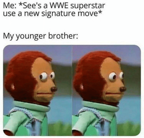 World Wrestling Entertainment, Brother, and Move: Me: *See's a WWE superstar  use a new signature move*  My younger brother: