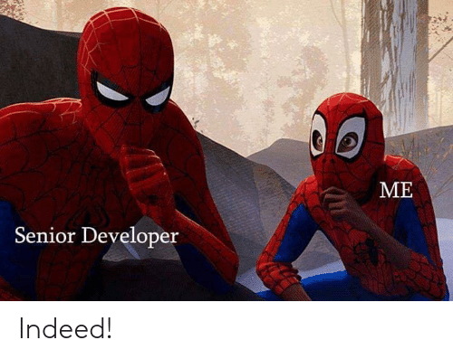 Indeed, Developer, and Senior: ME  Senior Developer Indeed!