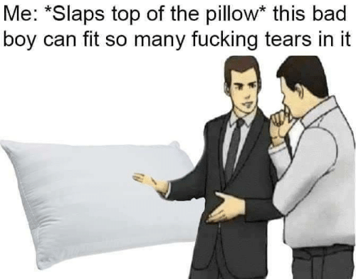 Can Fit: Me: *Slaps top of the pillow* this bad  boy can fit so many fucking tears in it