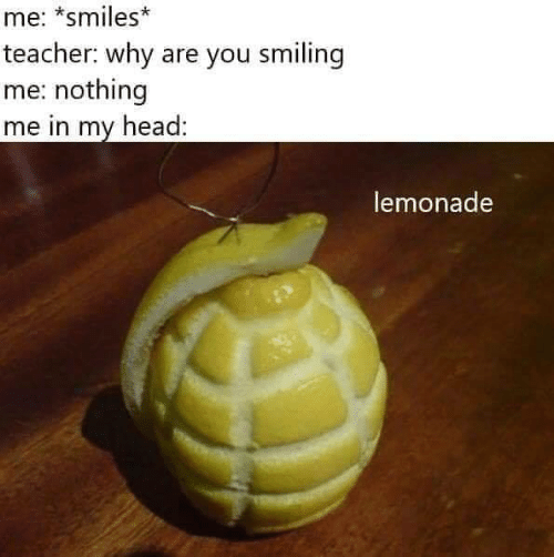 Head, Teacher, and Lemonade: me: *smiles*  teacher: why are you smiling  me: nothing  me in my head:  lemonade