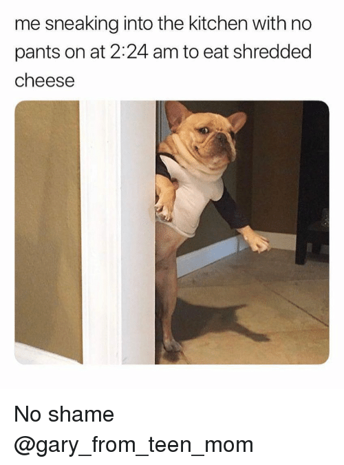 No Pants: me sneaking into the kitchen with no  pants on at 2:24 am to eat shredded  cheese No shame @gary_from_teen_mom