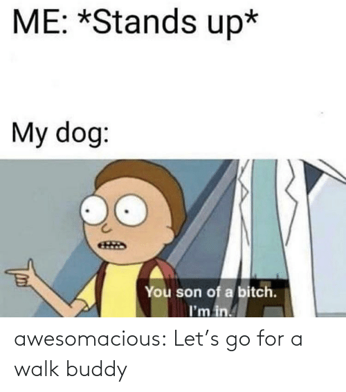 Son Of A: ME: *Stands up*  My dog:  You son of a bitch.  I'm in. awesomacious:  Let's go for a walk buddy