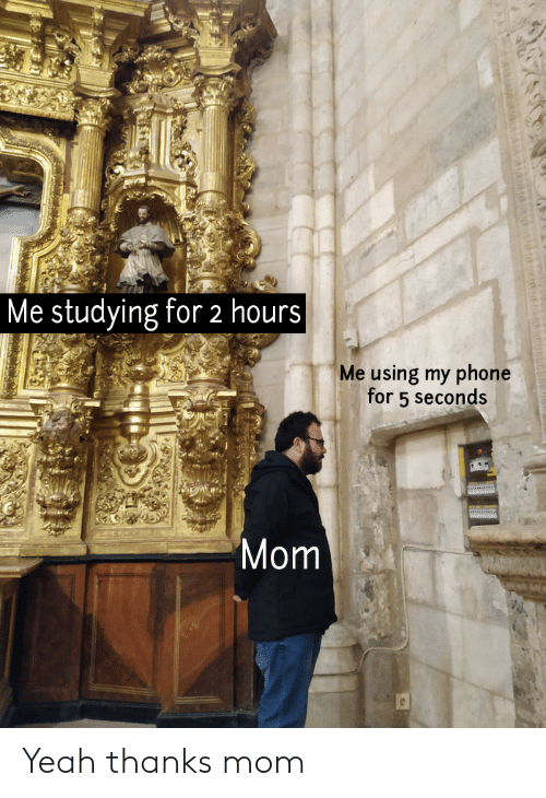 Phone, Yeah, and Mom: Me studying for 2 hours  Me using my phone  for 5 seconds  Mom Yeah thanks mom