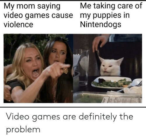 nintendogs: Me taking care of  My mom saying  video games cause my puppies in  violence  Nintendogs Video games are definitely the problem