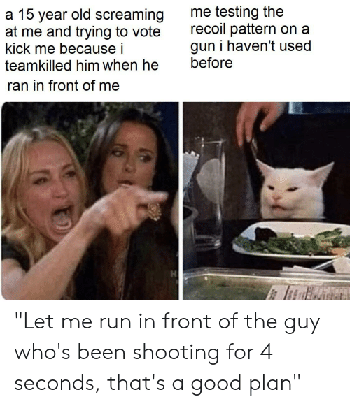 "Run, Good, and Old: me testing the  recoil pattern on a  gun i haven't used  before  a 15 year old screaming  at me and trying to vote  kick me because i  teamkilled him when he  ran in front of me ""Let me run in front of the guy who's been shooting for 4 seconds, that's a good plan"""