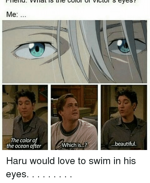 Memes, 🤖, and Color: Me  The color o  the ocean after  Which is...?  ...beautiful. Haru would love to swim in his eyes. . . . . . . . .