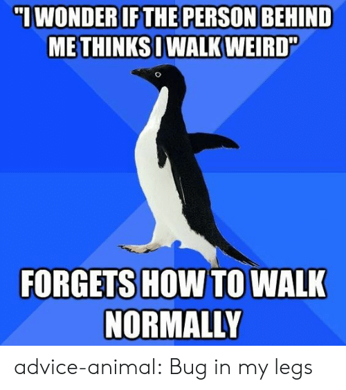 Advice, Tumblr, and Weird: ME THINKS WALK WEIRD  FORGETS HOW TO WALK  NORMALLY advice-animal:  Bug in my legs