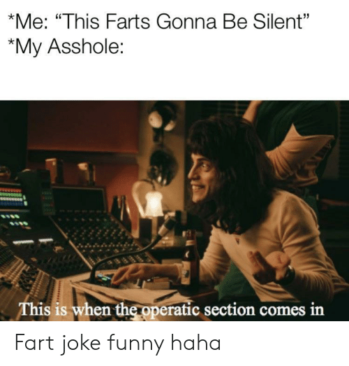 "Funny, Asshole, and Haha: *Me: ""This Farts Gonna Be Silent""  ""My Asshole:  This is when the operatic section comes in Fart joke funny haha"