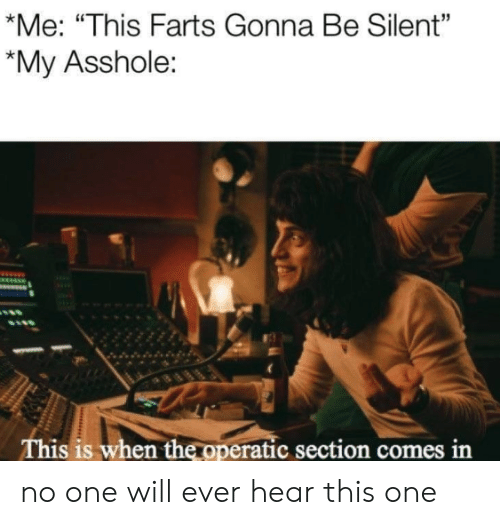 """Asshole, One, and Will: *Me: """"This Farts Gonna Be Silent""""  *My Asshole:  This is when the operatic section comes in no one will ever hear this one"""