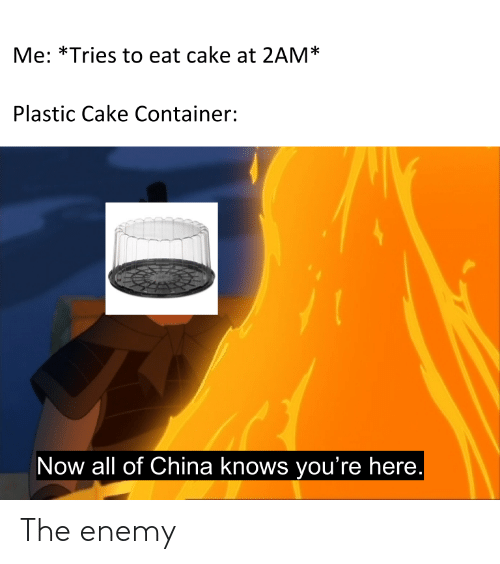 Now All Of China Knows Youre Here: Me: *Tries to eat cake at 2AM*  Plastic Cake Container:  Now all of China knows you're here. The enemy